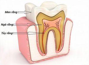 Lấy tủy răng có đau nhức không?